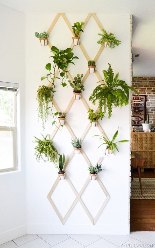 DIY Projects Creative Ways to Hang Plants on the Wall