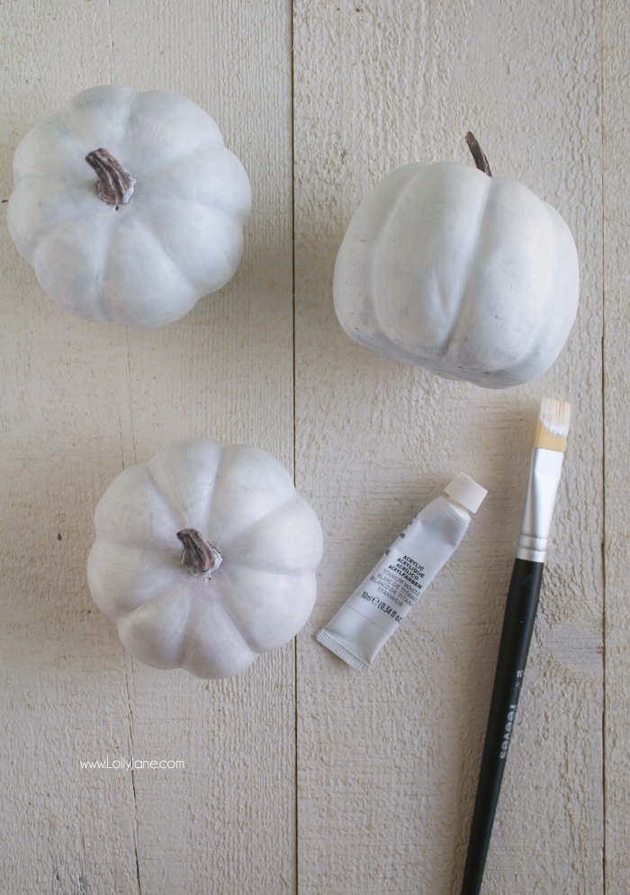 Click to see these boring white pumpkins turn into beautiful black and white plaid (buffalo check) fall decor!