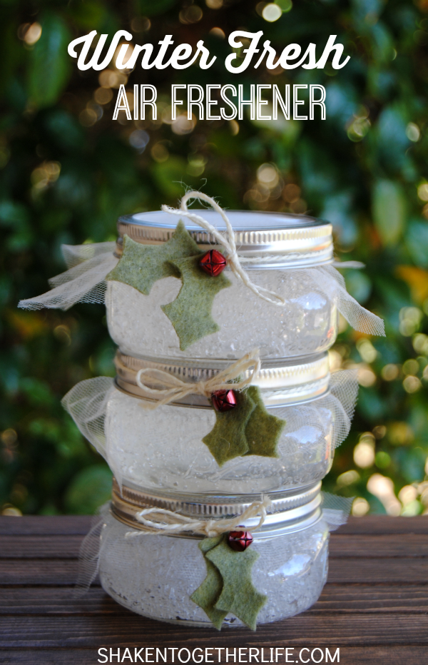 You know our obsession with mason jars. This easy winter fresh air freshener from Shaken Together is full of yummy Christmas scents, Rosemary and Spearmint, mm!