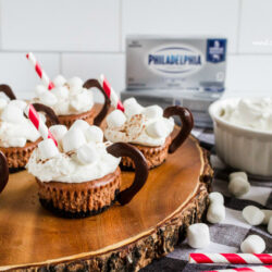 Hot Cocoa Cheesecake Minis recipe