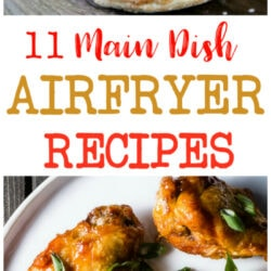 11 Airfryer Main Dish Recipes to try this week!