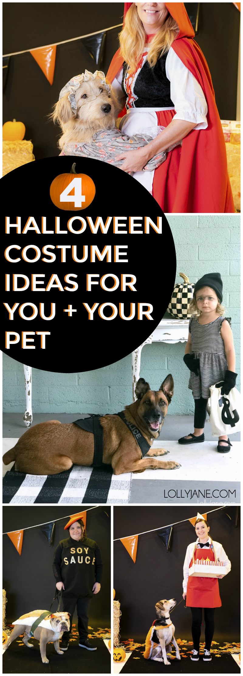 Cute and Easy Halloween Ideas for You and Your Pet! FUN!