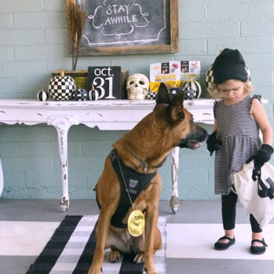 cute halloween costume ideas for you and your pet