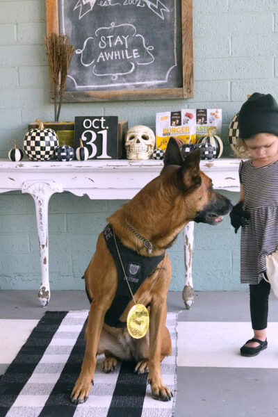 Cute and Easy Halloween Ideas for You and Your Pet! FUN! #halloween #halloweencostumes #pethalloweencostumes #halloweenpetcostumes #costumes #couplescostumes