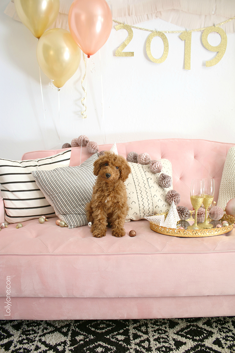 "Cute and EASY DIY ""2019"" Party Garland... make for your New Years Eve party or for ANY party! #nye #newyearseve #goldendoodle #diy #diygarland"