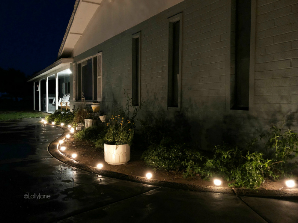 Loving these landscape lighting ideas, lights up the whole house with one stand! Use them in your garden, along your sidewalk, lots of ways to light up your house! #landscapelights #lighting #outdoorlighting #sidewalklights
