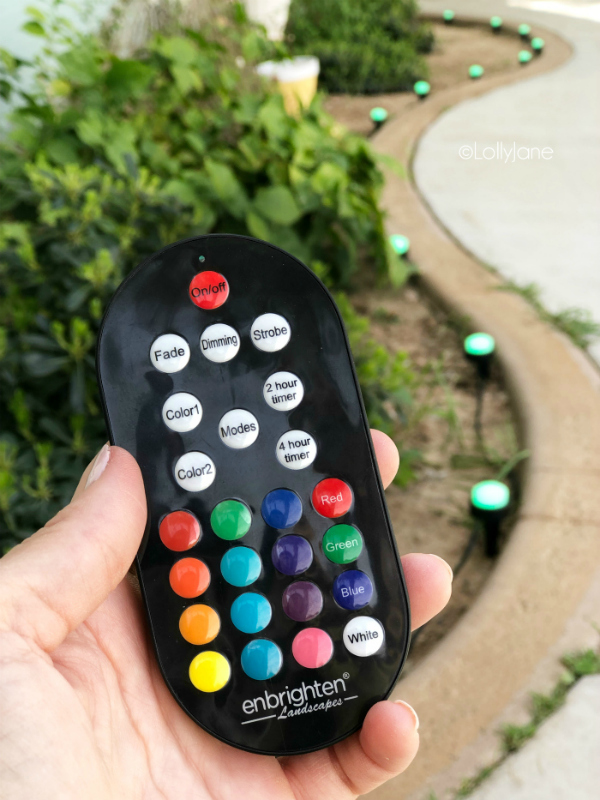 Check out these remote control cafe lights, the cutest home decor! You can change the bulb colors with the touch of a button!! Love these heavy duty hanging lights! #cafelights #hanginglights #remotecontrolcafelights #patiodecor #porchdecor