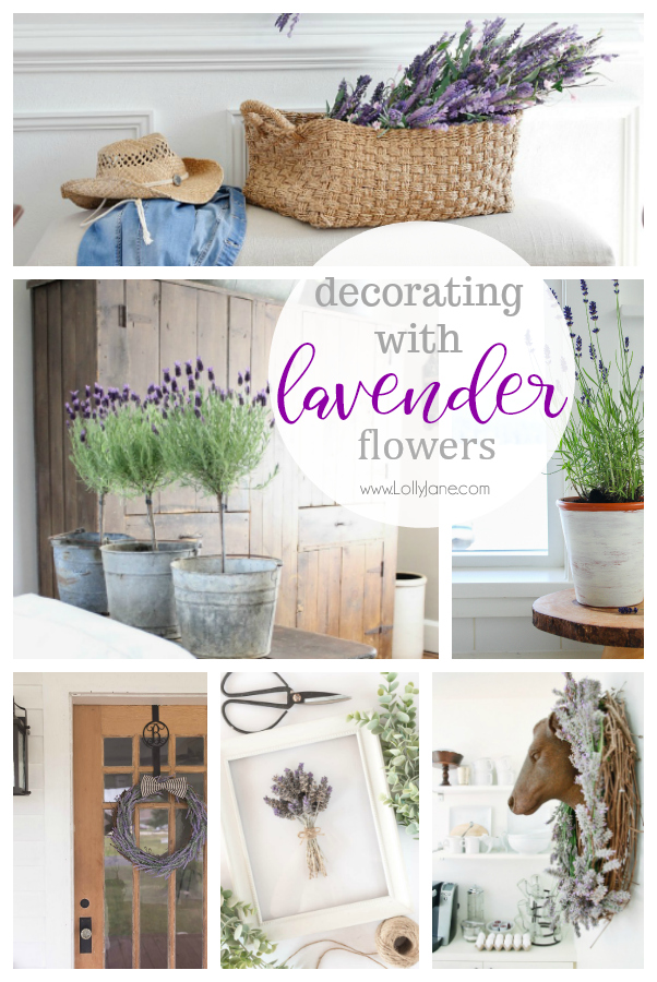 Learn how decorating with lavender flowers can add a touch of color and warmth to your home. Fresh lavender has many health benefits so you'll also feel good about displaying this pretty flower around your space. #lavenderdecor #decoratingwithlavender #lavenderflowers #homedecor #farmhousedecor #frenchcountrydecor