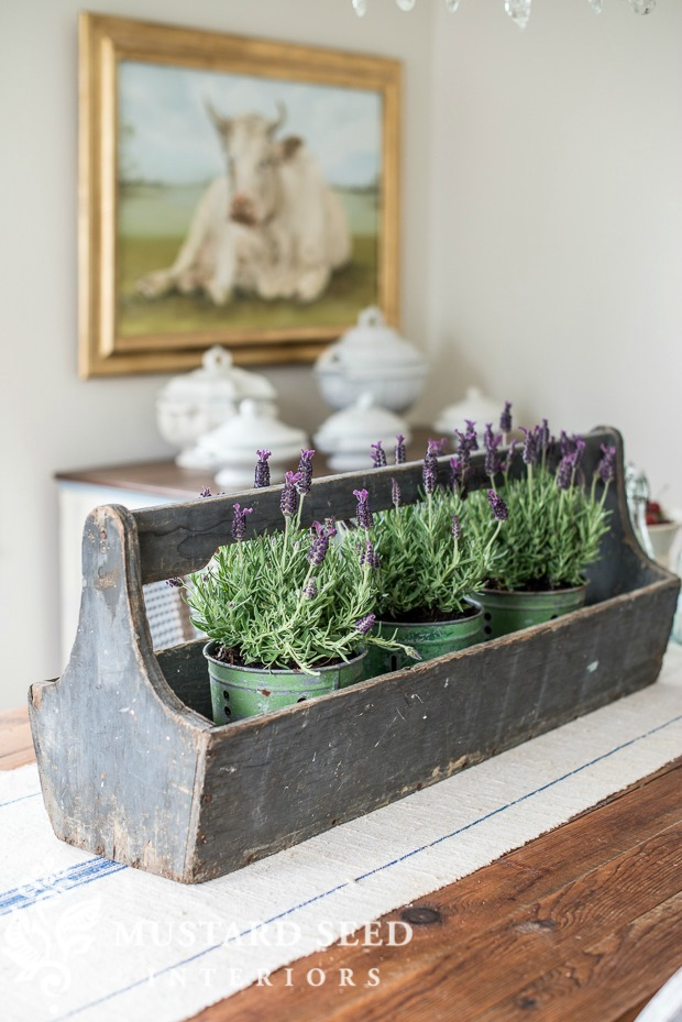 Adore this old wooden tote with aged tins filled with lavender plants. #lavendertablescape #lavenderdecor #tabledecor #lavenderdecorations