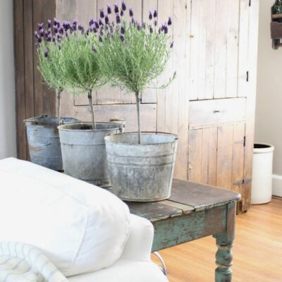 11 Ways to Decorate with Lavender Flowers