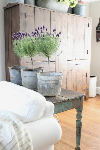 Learn how to make this pretty lavender topiary, perfect farmhouse home decor idea! #lavenderdecor #lavenderflower #diyhomedecor #farmhousedecor #diytopiary #farmhousetopiaries