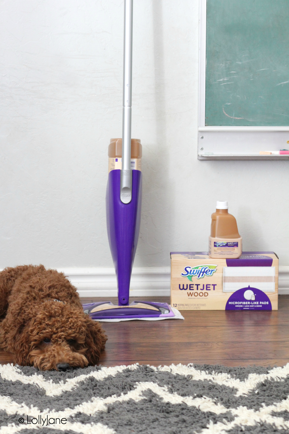 How To Clean Dog Drool Off Wood Floors Carpet Vidalondon