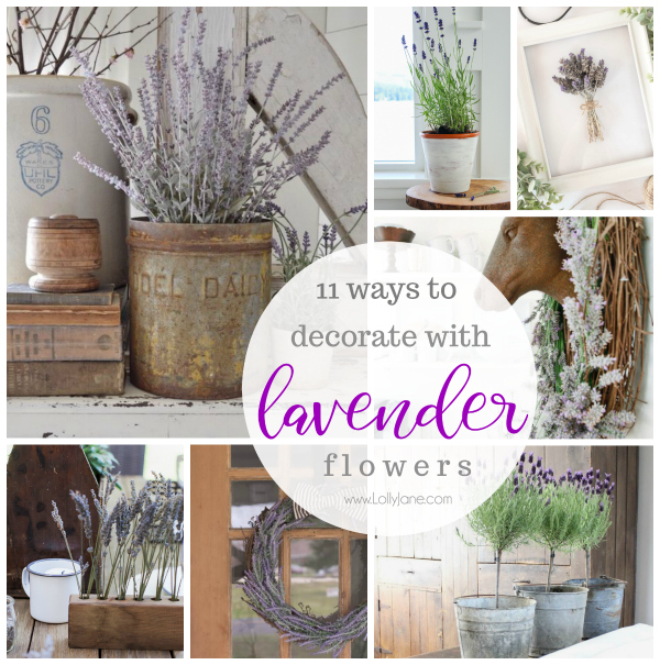 11 ways to decorate with lavender flowers. Add farmhouse charm to your home by adding soft lavender flowers for a soft pop of color. #lavenderflowers #homedecor #lavenderdecor #homedecorations #farmhousedecor