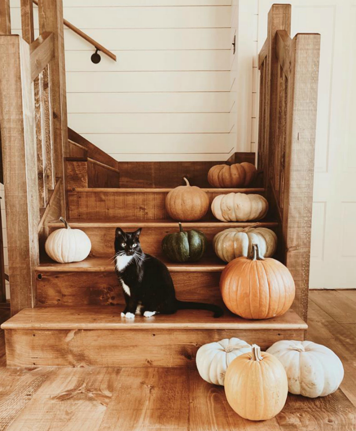Lovely fall farmhouse decor, lay pumpkins on stairs for natural fall decorations. #fallfarmhousedecor #falldecor #neutralfalldecor #farmhouseliving #pumpkinsonstairs #pumpkinsstaircase