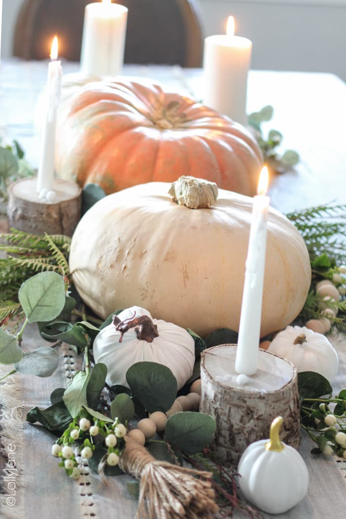 Gorgeous FALL inspired table scape, easy to recreate and won't break the bank! #falldecor #falldecorating #falltablescape