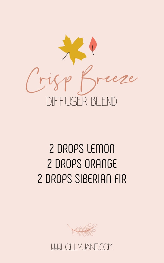 This refreshing Crisp Breeze fall diffuser blend recipe is one of our favorite fall scents! Enjoy this non-toxic way to create a fall vibe with immunity benefits. Fill your home with the warmth of fall with just a few drops. #crispbreezediffuserblend #essentialoilfallblend #crispbreezedoterrablend #essentialoilfallblend #fallblendrecipe #fallblendrecipes #falldiffuserblends #falldiffuserblendrecipe #falldiffuserblends