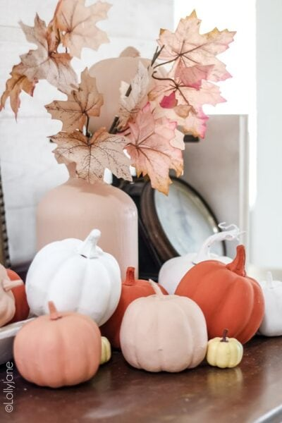 Transform ANY pumpkin to give it a pretty matte finish! DIY Baking Powder Painted Pumpkins are easier than you think to make! #diypumpkins #paintedpumpkins #bakingpowderpumpkins #falldecor #falldecoration #fallcraft #fallcrafts #pumpkincrafts #pumpkincraft #pumpkin #dollarstorecrafts