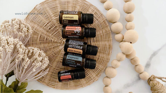 Our top 5 fall diffuser blends in one spot! We adore these warm and spicy fall diffuser recipes, super refreshing! Essential oil blends smell so good but also have so many health benefits, too! #falldiffuserblends #falldiffuser #fallblends #fallblendrecipes #pumpkinspiceessentialoils #essentialoils #essentialoilblends #fallblendrecipes #recipesforfallessentialoils