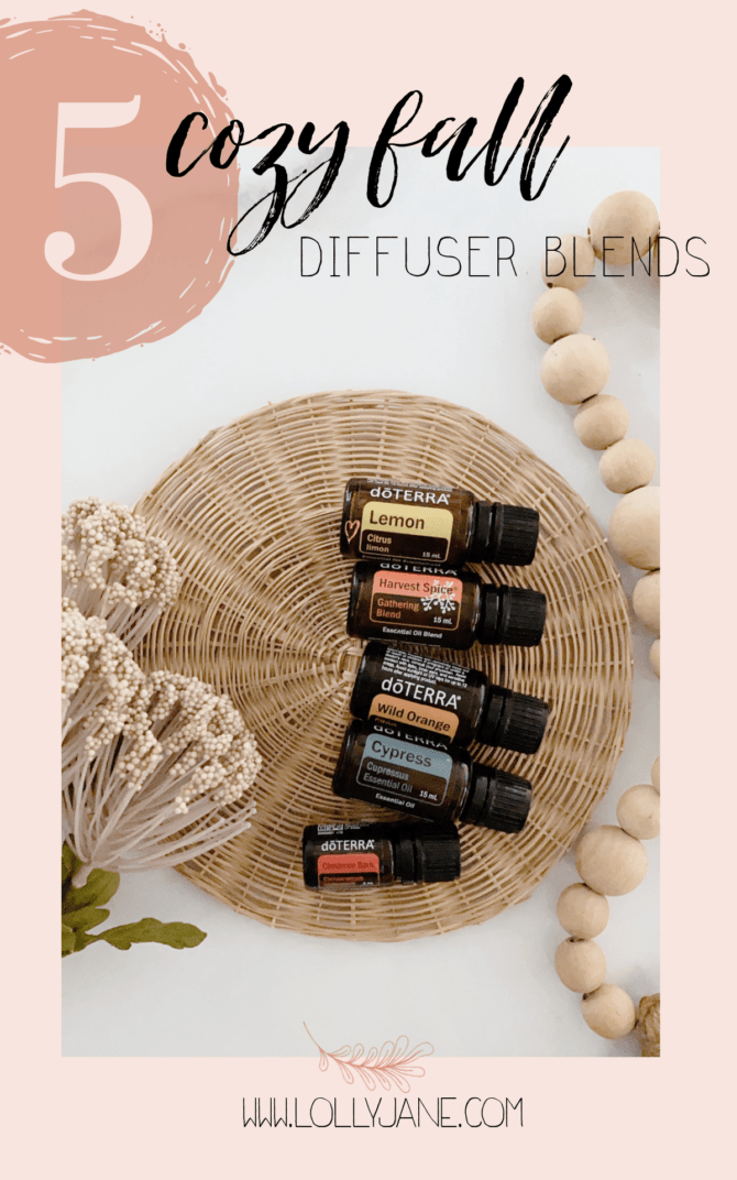 Top 5 Fall Diffuser Blends Lolly Jane