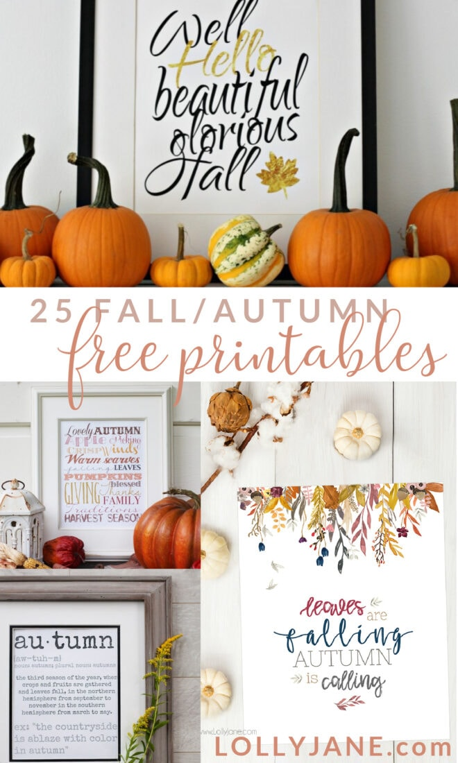 25 totally free fall printables! Just download these free fall prints then print them on your home computer. Pop them in a frame for super cheap fall decoration!! Love these gorgeous fall prints, perfect seasonal decor to last through Thanksgiving. #fallprintables #freefallart #freefallprintables #fallprintableart #falldigitaldownloads #freedigitaldownloadsfalldecor #cheapfalldecor #freefalldecorideas #freefalldecorations #freefallprintables