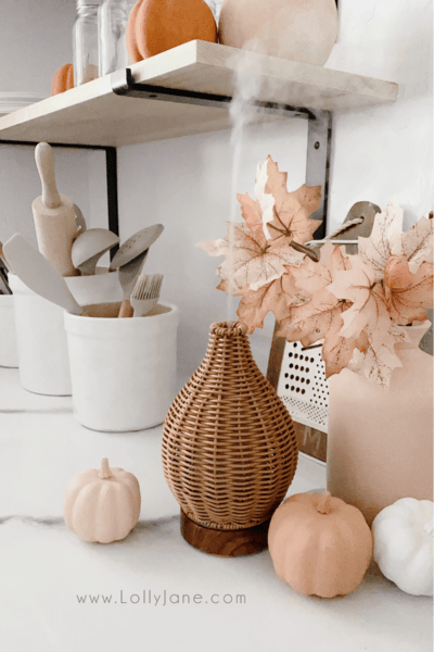 How adorable is this rattan diffuser!? LOVE it so much! It matches any decor, from modern farmhouse to boho to traditional, wicker matches any decor! It gives off a powerful flow, too! Pair it with our favorite 5 fall blend recipes for the perfect seasonal vibe. #rattandiffuser #essentialoilfallblend #fallblendrecipes #fallblendrecipe #wickerdiffuser #cutediffuser #rattanoildiffuser #wickeroildiffuser #bohodiffuser #modernfarmhousediffuser #fallblendrecipes