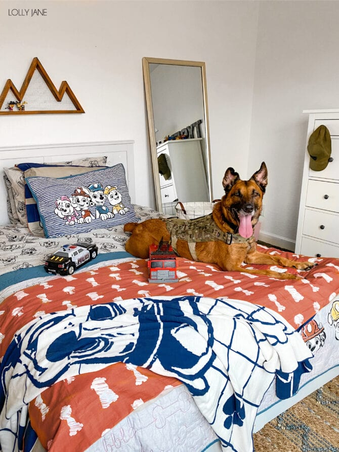 Boutique style character bedding? PLUS comfort? Yes please! (Cute dog not included! 🐕🐾)